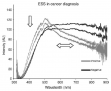 Representative ESS spectra obtained from archival bone material